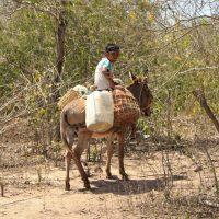 Niño de la Guajira
